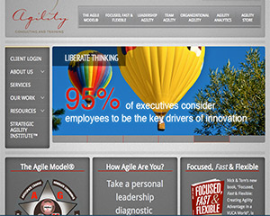 C@PSTONE Client - Agility Consulting and Training